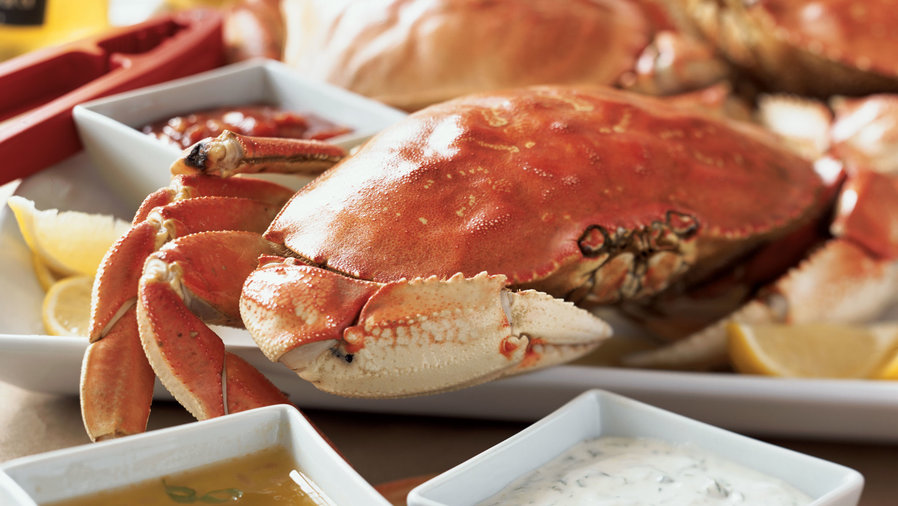 Crabs: Learn How To Eat This Mouthwatering and Delicious Crustacean